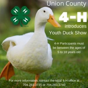 Duck Show