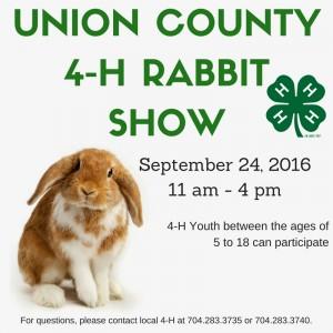 Rabbit Show