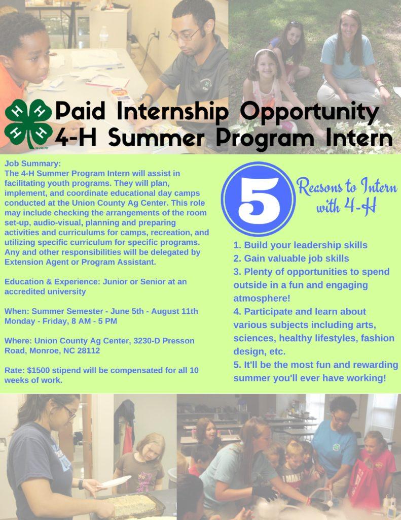4-H Summer Program Intern flyer