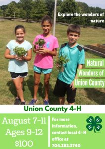 Cover photo for Exploring the Wonders of Nature - Summer Camp!