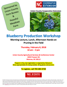 Cover photo for Blueberry Production Workshop