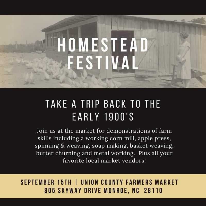 Homestead Festival Flyer