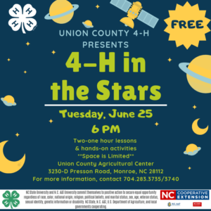4-H In The Stars Flyer