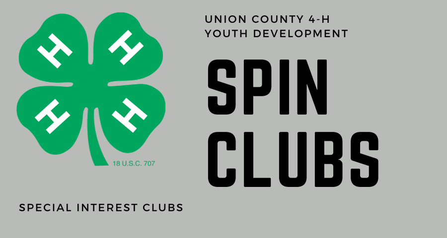 4H SPIN CLUBS AD