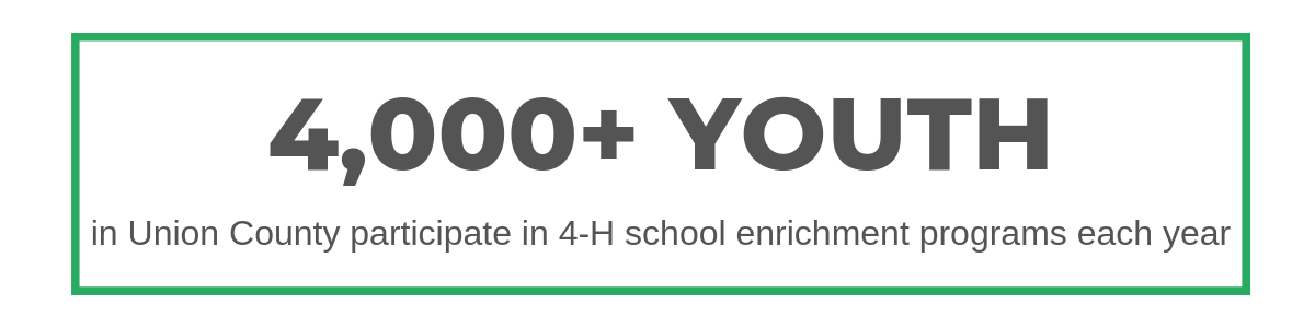 4000 plus youth are currently participating in school enrichment programs with union county 4-h