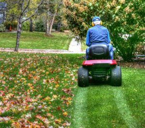 mulching leaves with a lawnmower