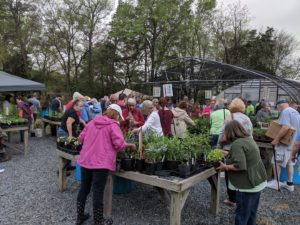 Residents shopping at 2019 Master Gardener Plant Sale