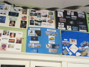 several vision boards posted on a wall
