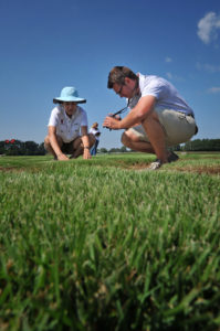 Turf grass faculty and students looking over samples