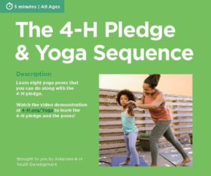 The 4-H Pledge and Yoga