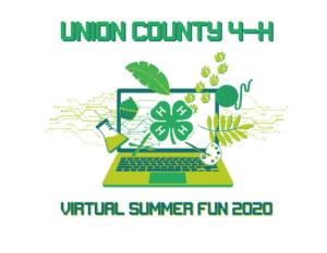 Graphic design of UC 4H Virtual Summer Fun 2020 Program