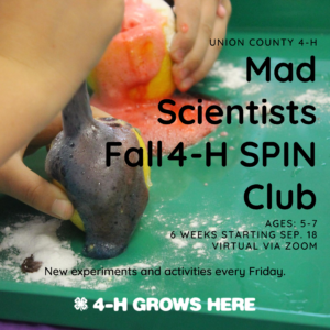 Cover photo for New This Fall: 4-H Mad Scientists SPIN Club