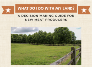front page of what to do with my land publication