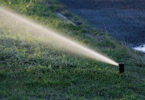 lawn irrigation via sprinkler system