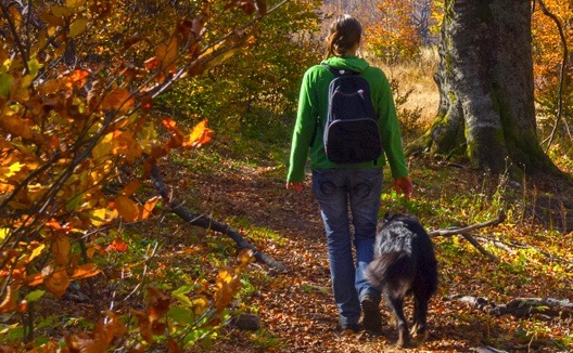 woman walking through woods.