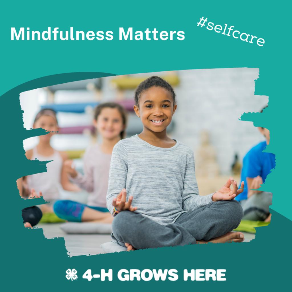Mindfulness Matters Image