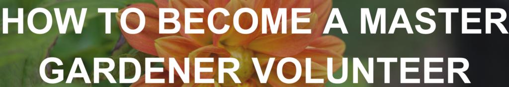 How to become a Master Gardener Volunteer