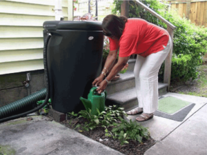 Woman in Pink Shirt and White Pants holding a water pot standing near a black rain barrel