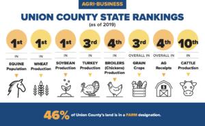 Union County Rankings Chart