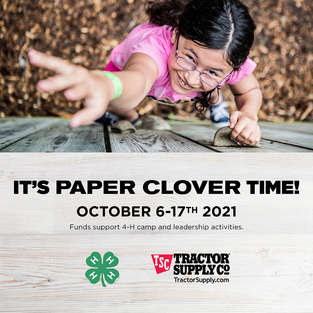 Advertisement for Paper Clover
